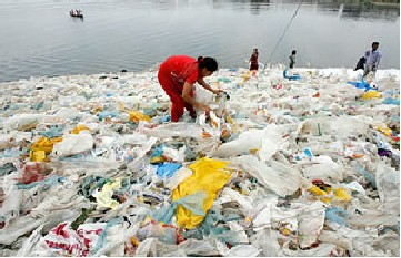 Plastic Bag Beach.  Click image for the larges view.