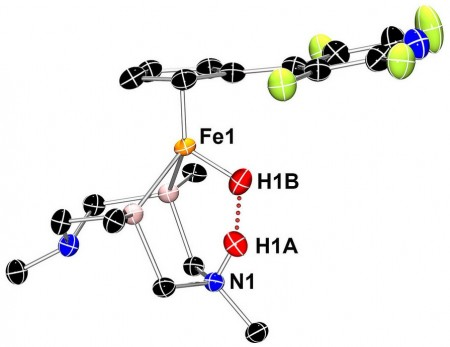 Structure of a Hydrogenase Enzyme Based Molecular Catalyst. Click image for more info.