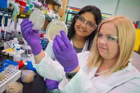Isopentenol Researchers Aindrila Mukhopadhyay and Heather Jansen.  Click image for the largest view.  Image Credit: Berkeley Lab.
