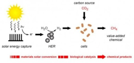 Berkeley Lab Solar to Hydrogen Plus CO2 to Methane. Click image for the largest view. Image Credit: Berkeley Lab.