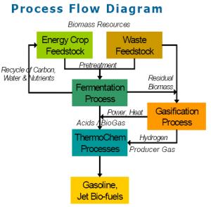 Byogy Process Chart