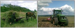Old and New Russian Agriculture
