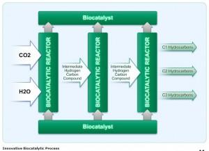 Carbon Sciences Process Graph