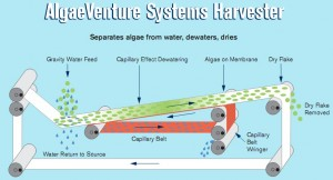 AlgaeVenture Harvester Block Diagram. Click image for a larger view.