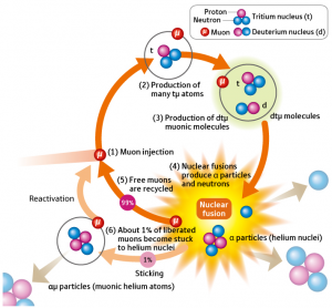 Muon Catalyst Fusion Process. Click image for more info.