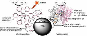"""Oxford""""s hybrid Enzyme-TiO2 Nanoparticle System. Click image for more info."""
