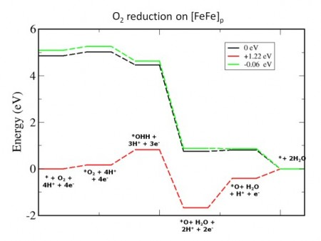 Hydrogen Evolution & Oxygen Reduction In Iron Based Electrochemical Catalyst. Click image for more info.
