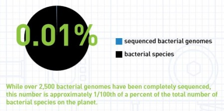 Bacterial Genomes Sequenced vs Species. Click image for the largest view.