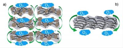 Carbon Based Catalyst In An Acidic Fuel Cell.  Click image for more info.