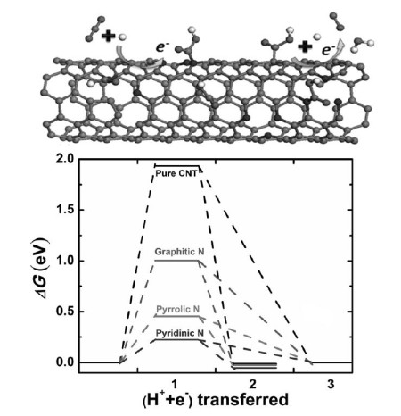 The microstructure of the nitrogen-doped carbon nanotubes was crucial to the efficiency of the catalyst. Pyridinic nitrogens within the carbon backbone were more selective for carbon dioxide reduction than pyrrolic or graphitic nitrogens. See the link to the srudy paper below for more information. Click image for the largest view.