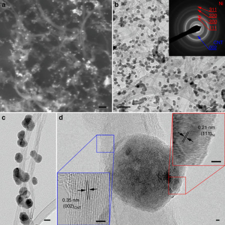 (a) SEM image. Scale bar, 100 nm. (b) TEM image. Scale bar, 100 nm. Inset is selected area electron diffraction pattern. (c) A magnified TEM image. Scale bar, 20 nm. (d) HRTEM images of nickel particle and CNT, respectively. Scale bars, 2 nm. Image Credit: University of Delaware, Department of Chemical and Biomolecular Engineering. Click image for the largest view.