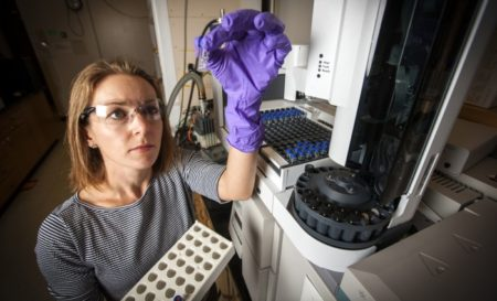 Sarah Baker Examines Methane to Methanol Samples. Image Credit: LLNL. Click Image for the largest view.